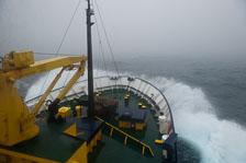 aka-Antarctic-Quest-2009-01-25__D3X8236.jpg