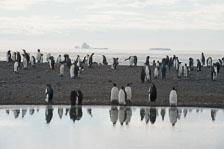 aka-Antarctic-Quest-2009-01-28__D3X10778.jpg