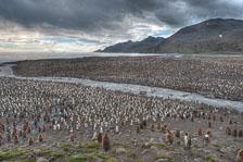 aka-Antarctic-Quest-2009-01-28__D3X10905-09.jpg