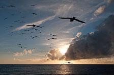aka-Antarctic-Quest-2009-02-02__D3X15320.jpg