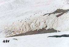 aka-Antarctic-Quest-2009-02-03__D3X16872.jpg
