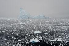 aka-Antarctic-Quest-2009-02-03__D3X17081.jpg