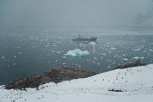 aka-Antarctic-Quest-2009-02-03__D3X17110.jpg